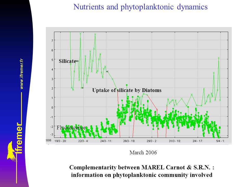 Diatoms Uptake of silicate by Diatoms Fluorescence Silicate Nutrients and phytoplanktonic dynamics March 2006 Complementarity between MAREL Carnot & S.R.N.