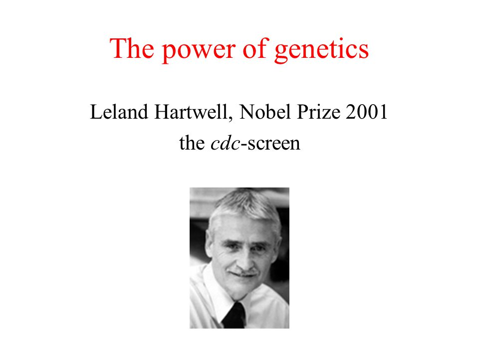 The power of genetics Leland Hartwell, Nobel Prize 2001 the cdc-screen