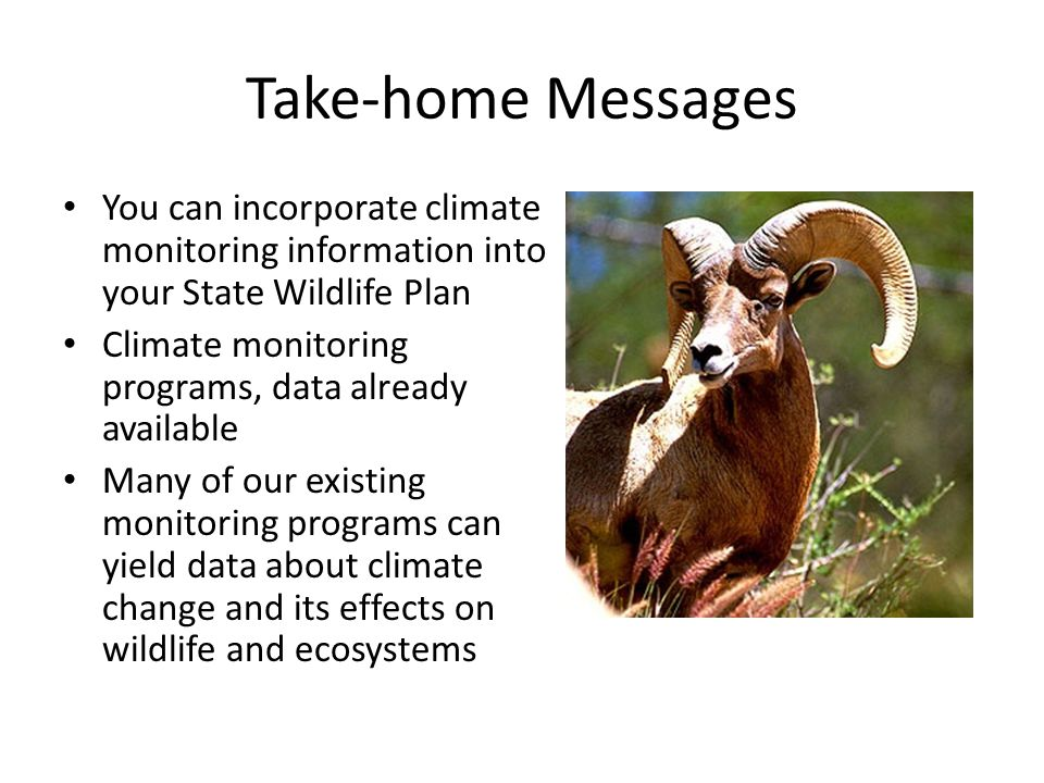 Take-home Messages You can incorporate climate monitoring information into your State Wildlife Plan Climate monitoring programs, data already available Many of our existing monitoring programs can yield data about climate change and its effects on wildlife and ecosystems