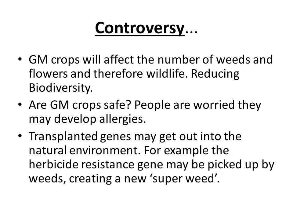 Controversy... GM crops will affect the number of weeds and flowers and therefore wildlife.