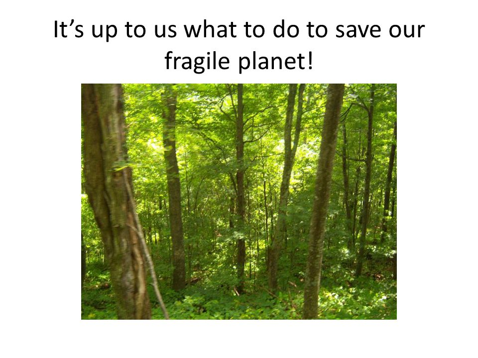 It's up to us what to do to save our fragile planet!