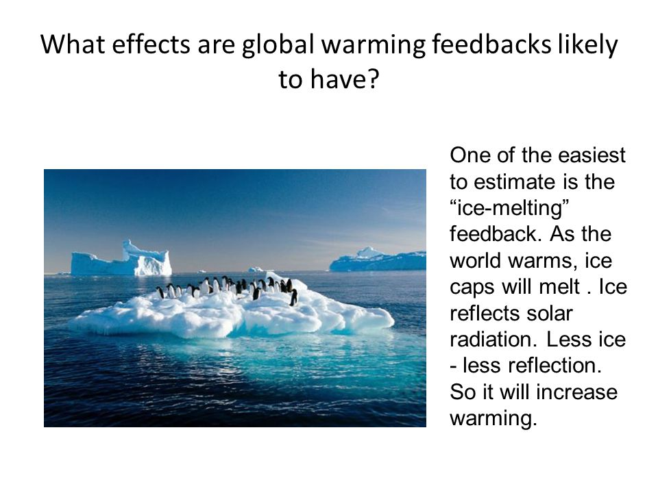 What effects are global warming feedbacks likely to have.