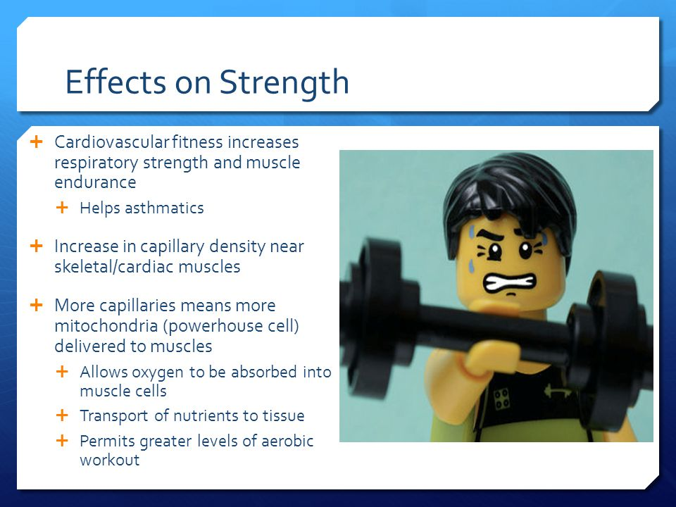 Effects on Strength  Cardiovascular fitness increases respiratory strength and muscle endurance  Helps asthmatics  Increase in capillary density near skeletal/cardiac muscles  More capillaries means more mitochondria (powerhouse cell) delivered to muscles  Allows oxygen to be absorbed into muscle cells  Transport of nutrients to tissue  Permits greater levels of aerobic workout