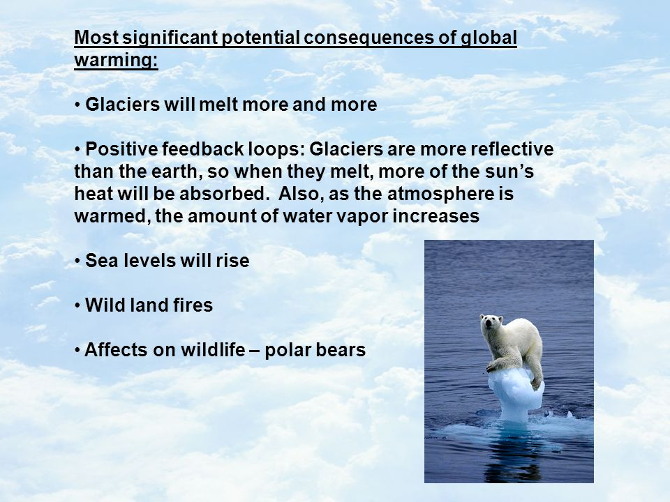 Most significant potential consequences of global warming: Glaciers will melt more and more Positive feedback loops: Glaciers are more reflective than the earth, so when they melt, more of the sun's heat will be absorbed.
