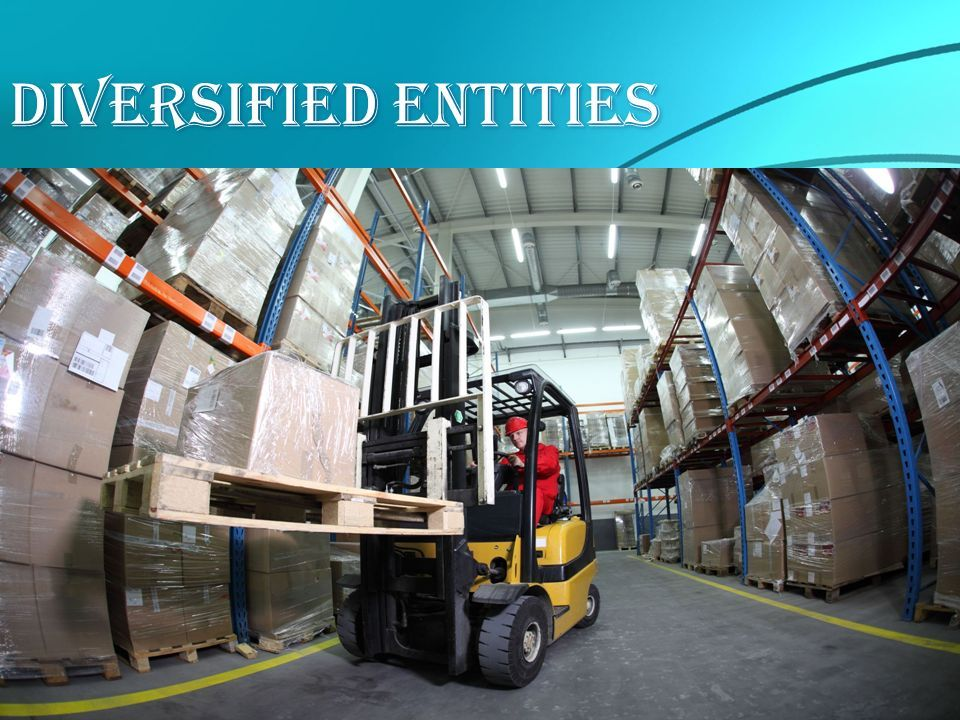 Diversified Entities  Why Choose div-ent Chicago