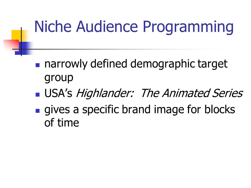 Niche Audience Programming narrowly defined demographic target group USAs Highlander: The Animated Series gives a specific brand image for blocks of time