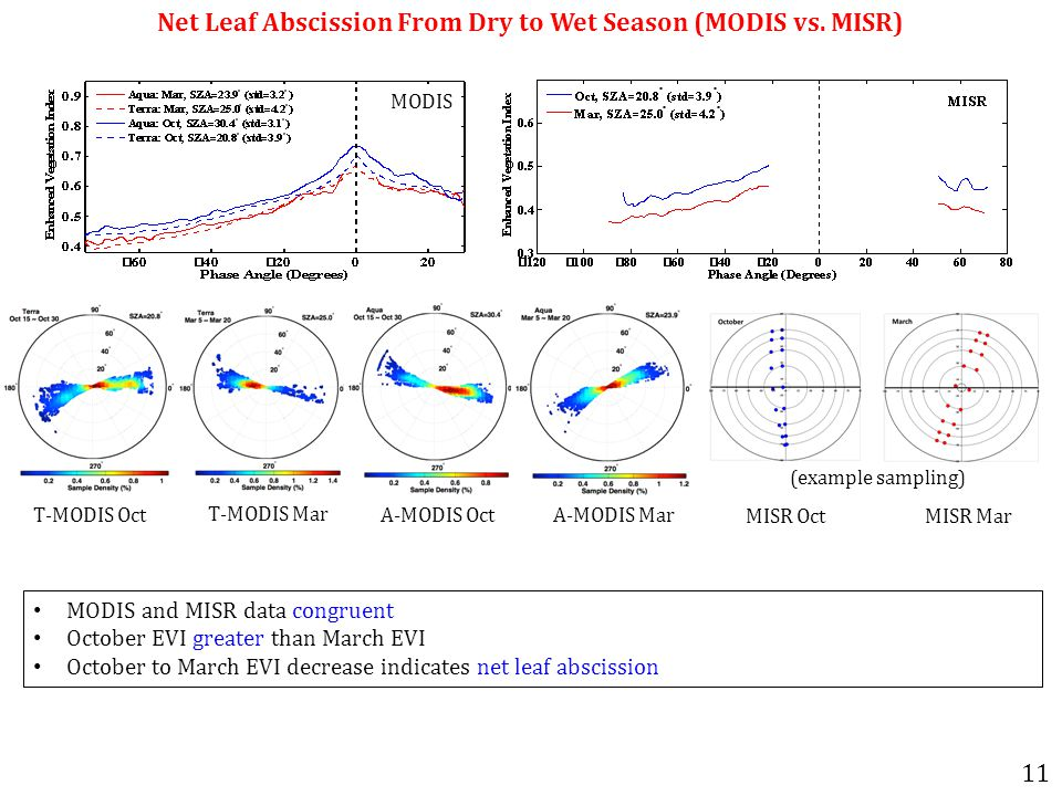Net Leaf Abscission From Dry to Wet Season (MODIS vs.