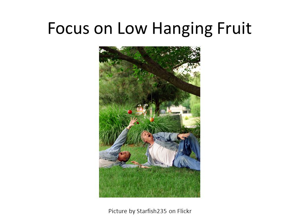 Focus on Low Hanging Fruit Picture by Starfish235 on Flickr