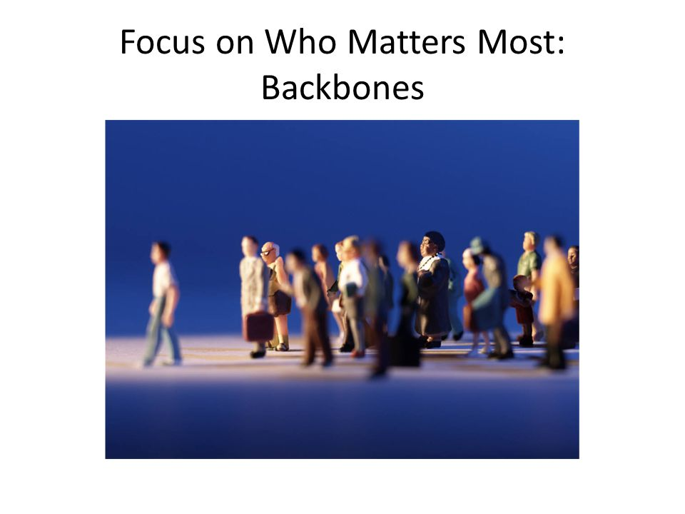Focus on Who Matters Most: Backbones