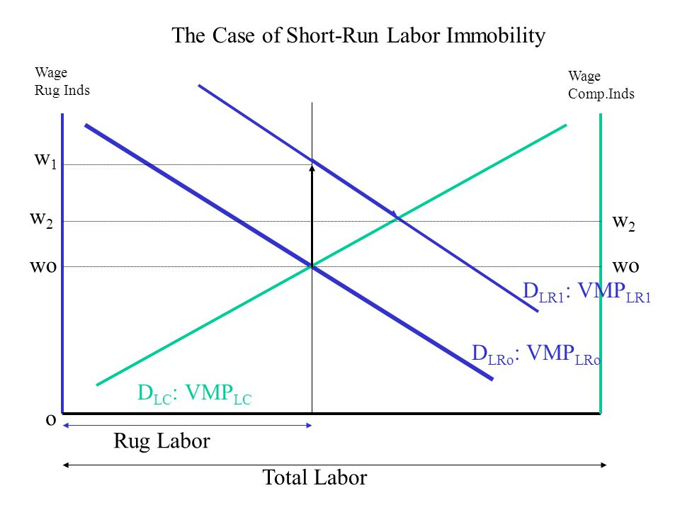 Total Labor wo o Wage Rug Inds Wage Comp.Inds D LRo : VMP LRo D LC : VMP LC The Case of Short-Run Labor Immobility D LR1 : VMP LR1 Rug Labor w1w1 w2w2 w2w2