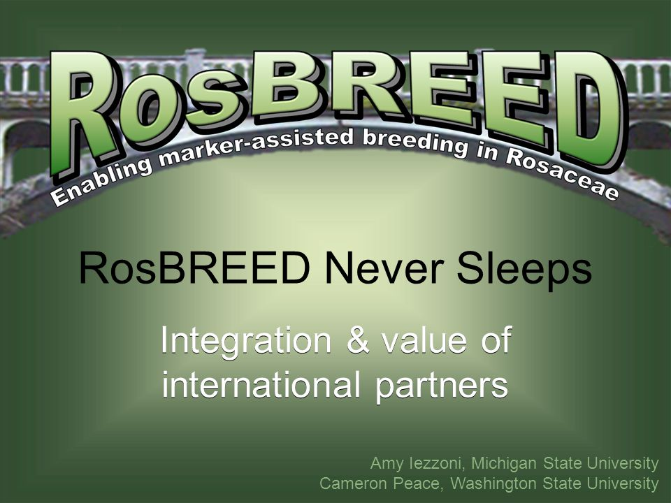 RosBREED Never Sleeps Integration & value of international partners Amy Iezzoni, Michigan State University Cameron Peace, Washington State University