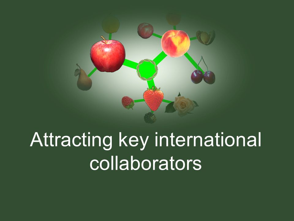 Attracting key international collaborators