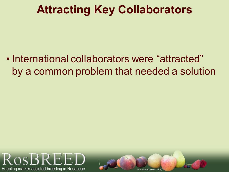International collaborators were attracted by a common problem that needed a solution Attracting Key Collaborators