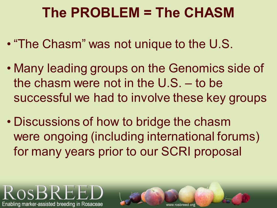 The Chasm was not unique to the U.S.