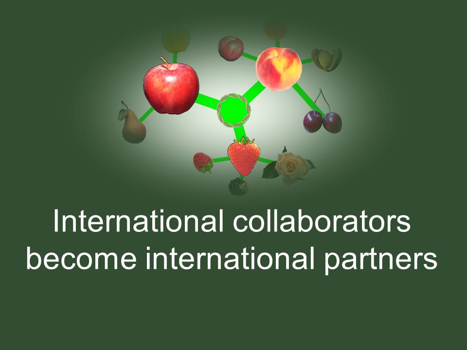 International collaborators become international partners