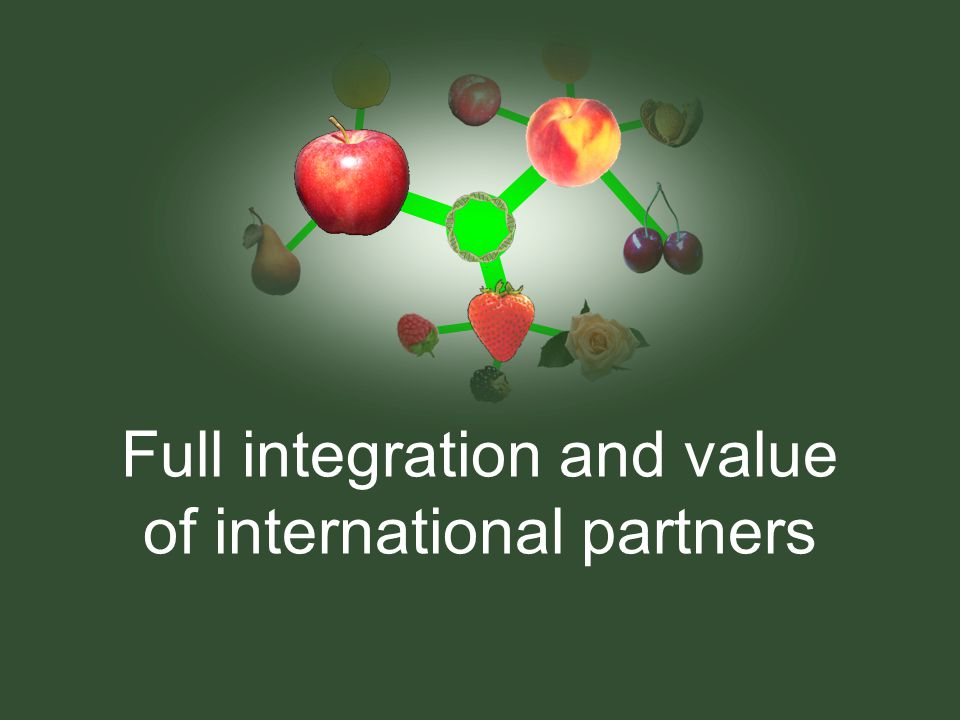 Full integration and value of international partners