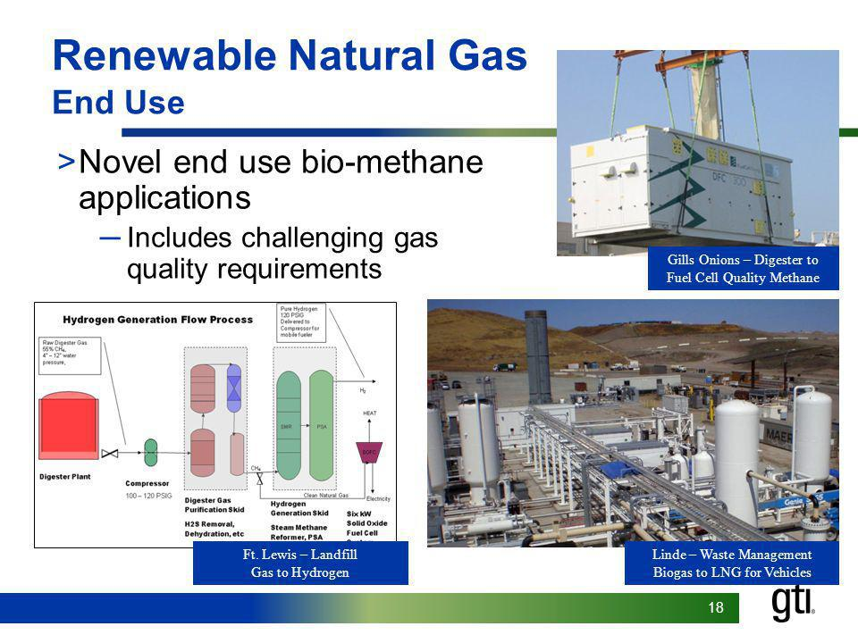 18 Renewable Natural Gas End Use >Novel end use bio-methane applications Includes challenging gas quality requirements Gills Onions – Digester to Fuel Cell Quality Methane Linde – Waste Management Biogas to LNG for Vehicles Ft.