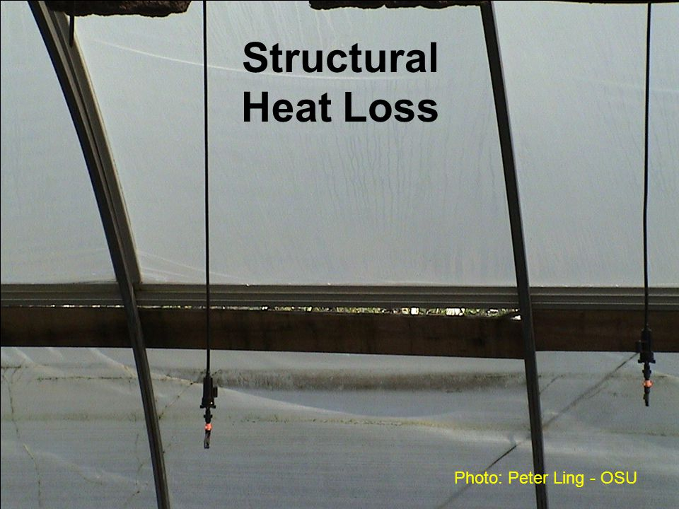 Structural Heat Loss Photo: Peter Ling - OSU