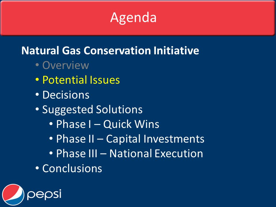 Agenda Natural Gas Conservation Initiative Overview Potential Issues Decisions Suggested Solutions Phase I – Quick Wins Phase II – Capital Investments Phase III – National Execution Conclusions