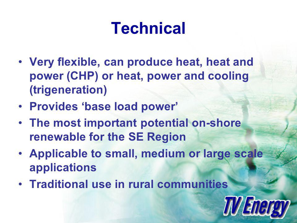 Technical Very flexible, can produce heat, heat and power (CHP) or heat, power and cooling (trigeneration) Provides base load power The most important potential on-shore renewable for the SE Region Applicable to small, medium or large scale applications Traditional use in rural communities