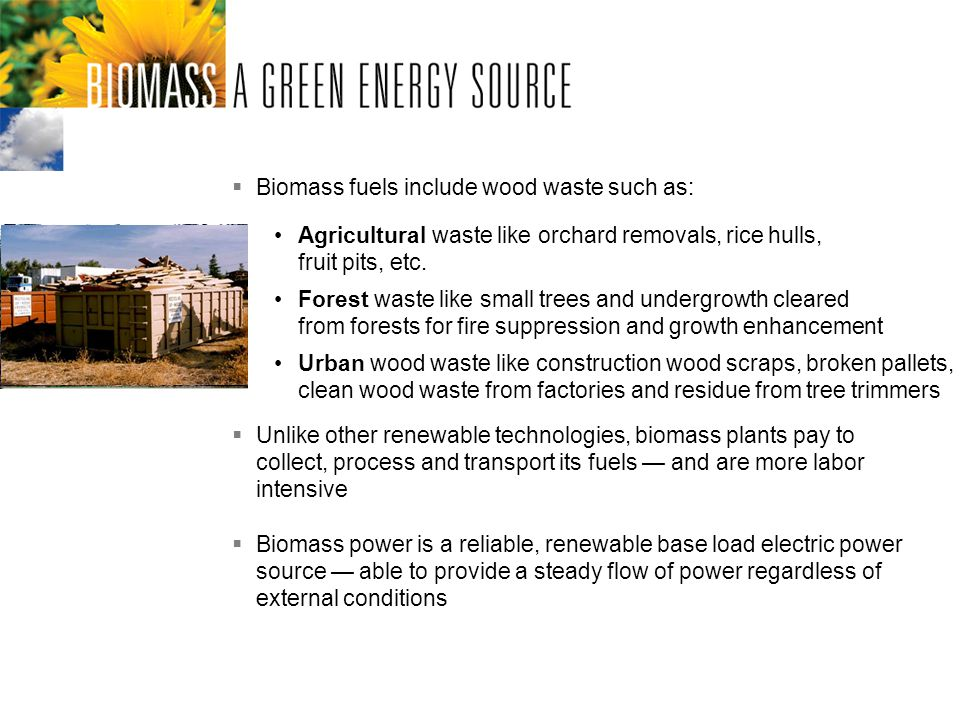 Biomass fuels include wood waste such as: Urban wood waste like construction wood scraps, broken pallets, clean wood waste from factories and residue from tree trimmers Forest waste like small trees and undergrowth cleared from forests for fire suppression and growth enhancement Agricultural waste like orchard removals, rice hulls, fruit pits, etc.
