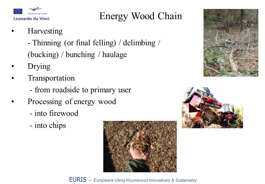 Harvesting - Thinning (or final felling) / delimbing / (bucking) / bunching / haulage Drying Transportation - from roadside to primary user Processing of energy wood - into firewood - into chips EURIS – Europeans Using Roundwood Innovatively & Sustainably Energy Wood Chain