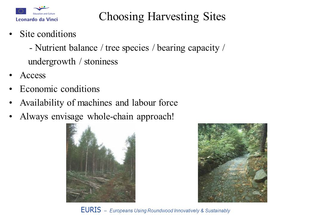 EURIS – Europeans Using Roundwood Innovatively & Sustainably Choosing Harvesting Sites Site conditions - Nutrient balance / tree species / bearing capacity / undergrowth / stoniness Access Economic conditions Availability of machines and labour force Always envisage whole-chain approach!