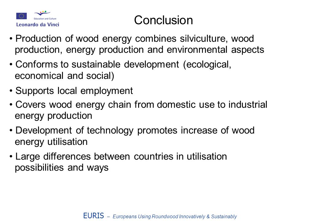 EURIS – Europeans Using Roundwood Innovatively & Sustainably Conclusion Production of wood energy combines silviculture, wood production, energy production and environmental aspects Conforms to sustainable development (ecological, economical and social) Supports local employment Covers wood energy chain from domestic use to industrial energy production Development of technology promotes increase of wood energy utilisation Large differences between countries in utilisation possibilities and ways