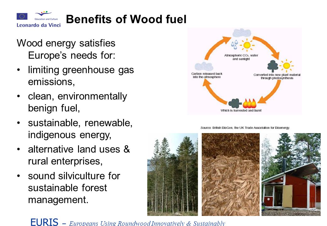 EURIS – Europeans Using Roundwood Innovatively & Sustainably Wood energy satisfies Europes needs for: limiting greenhouse gas emissions, clean, environmentally benign fuel, sustainable, renewable, indigenous energy, alternative land uses & rural enterprises, sound silviculture for sustainable forest management.