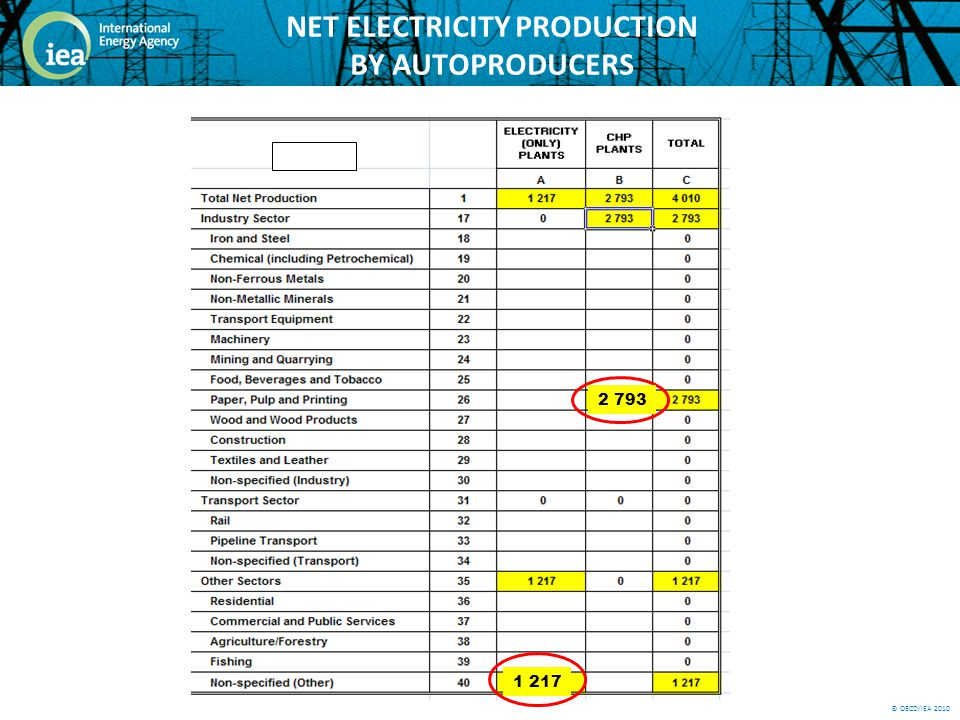 © OECD/IEA 2010 NET ELECTRICITY PRODUCTION BY AUTOPRODUCERS 2 793 1 217
