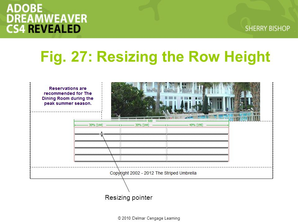 © 2010 Delmar Cengage Learning Fig. 27: Resizing the Row Height Resizing pointer