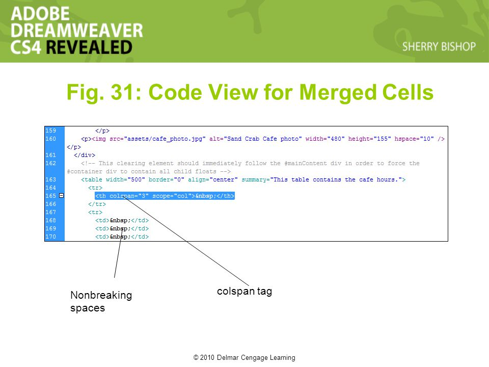 © 2010 Delmar Cengage Learning Fig. 31: Code View for Merged Cells Nonbreaking spaces colspan tag