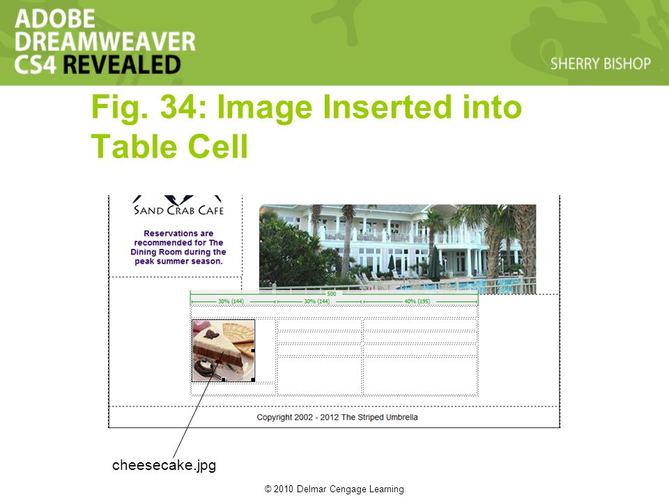 © 2010 Delmar Cengage Learning Fig. 34: Image Inserted into Table Cell cheesecake.jpg