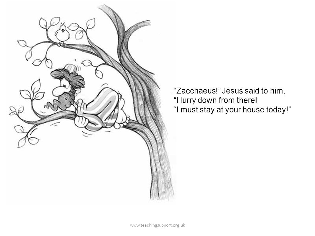 Zacchaeus. Jesus said to him, Hurry down from there.