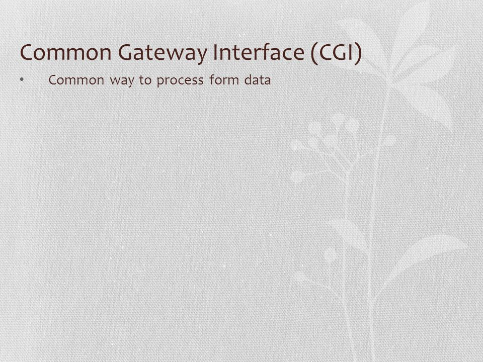 Common Gateway Interface (CGI) Common way to process form data
