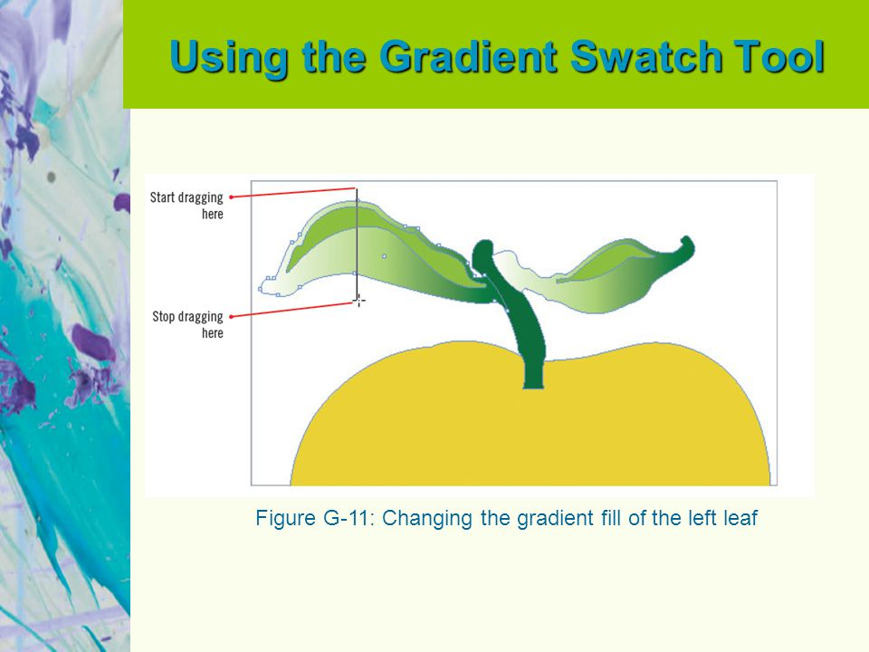 Using the Gradient Swatch Tool Figure G-11: Changing the gradient fill of the left leaf