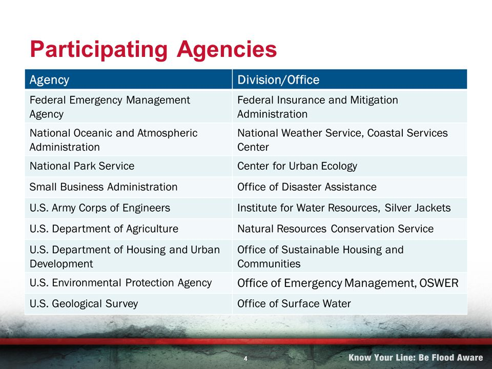 4 Participating Agencies