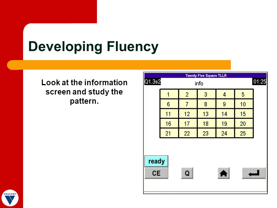 Look at the information screen and study the pattern. Developing Fluency