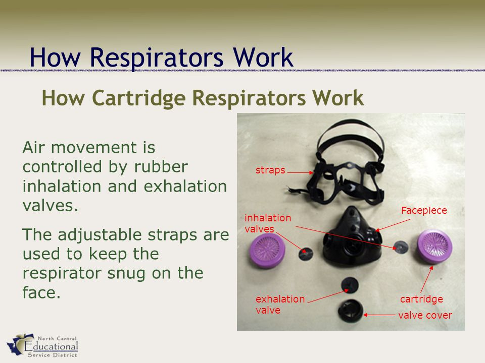 How Respirators Work How Cartridge Respirators Work Air movement is controlled by rubber inhalation and exhalation valves.