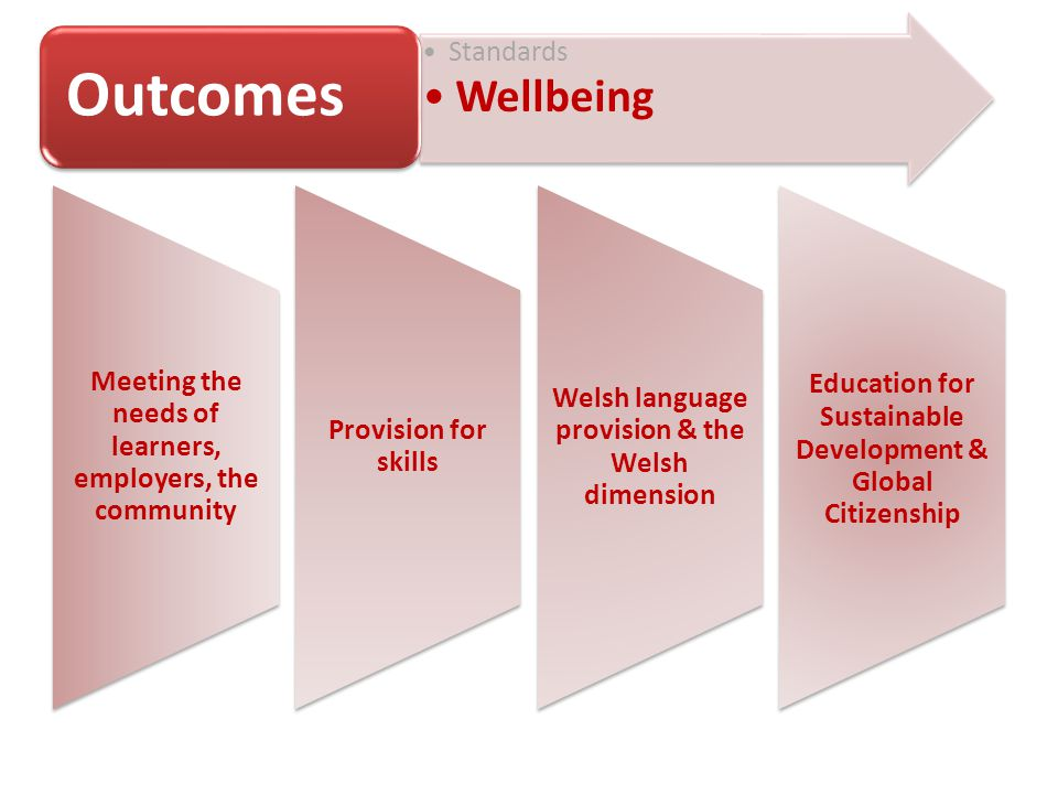 Meeting the needs of learners, employers, the community Provision for skills Welsh language provision & the Welsh dimension Education for Sustainable Development & Global Citizenship Standards Wellbeing Outcomes