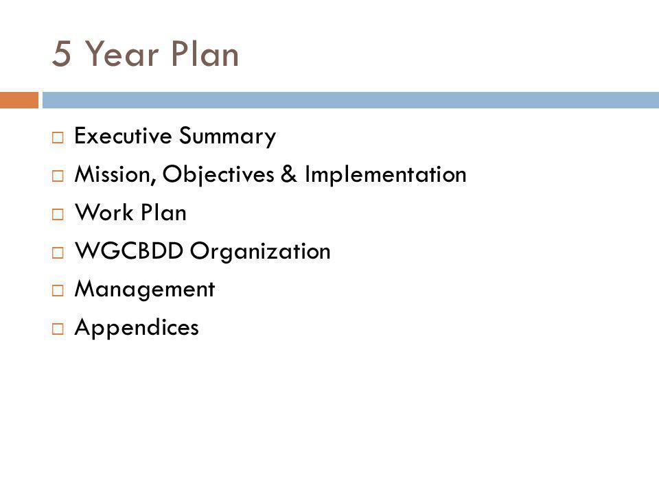 5 Year Plan Executive Summary Mission, Objectives & Implementation Work Plan WGCBDD Organization Management Appendices