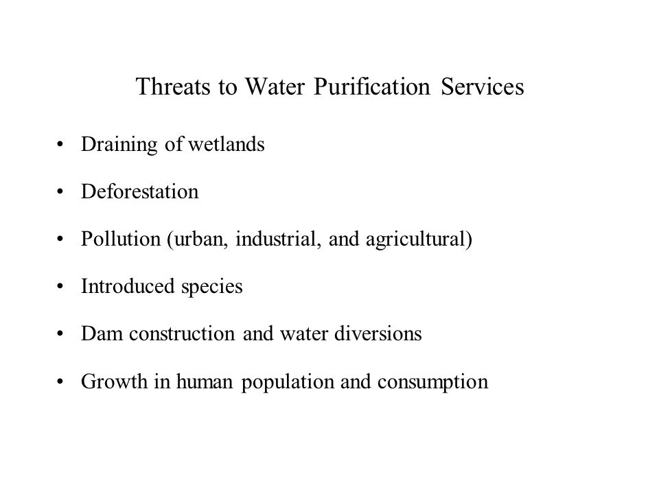 Threats to Water Purification Services Draining of wetlands Deforestation Pollution (urban, industrial, and agricultural) Introduced species Dam construction and water diversions Growth in human population and consumption