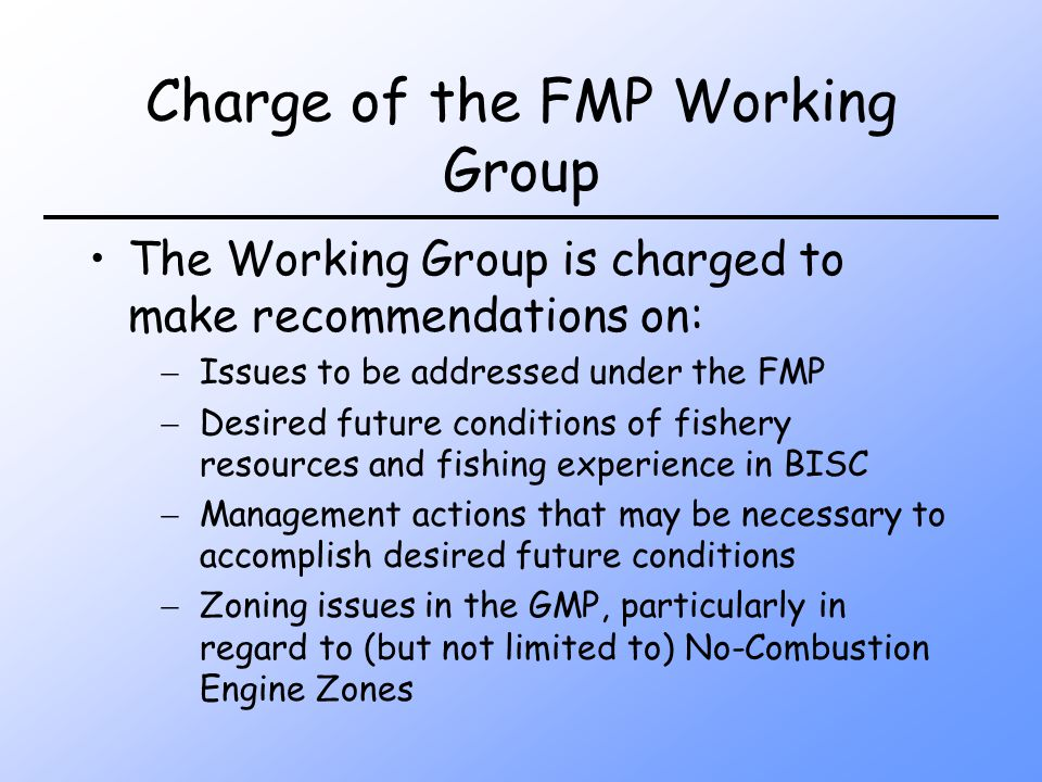Charge of the FMP Working Group The Working Group is charged to make recommendations on: Issues to be addressed under the FMP Desired future conditions of fishery resources and fishing experience in BISC Management actions that may be necessary to accomplish desired future conditions Zoning issues in the GMP, particularly in regard to (but not limited to) No-Combustion Engine Zones