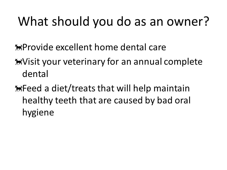 What should you do as an owner.