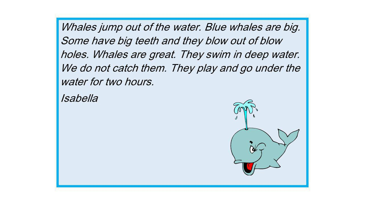The Whale Facts by Room 1  Whales have humungous blow holes
