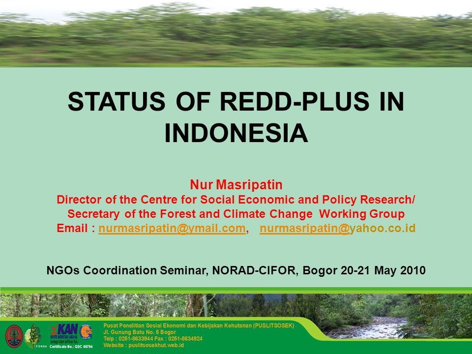 STATUS OF REDD-PLUS IN INDONESIA Nur Masripatin Director of the Centre for Social Economic and Policy Research/ Secretary of the Forest and Climate Change Working Group    NGOs Coordination Seminar, NORAD-CIFOR, Bogor May 2010