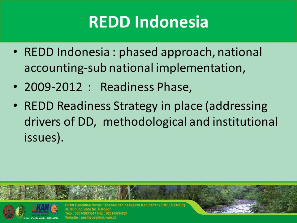 REDD Indonesia REDD Indonesia : phased approach, national accounting-sub national implementation, : Readiness Phase, REDD Readiness Strategy in place (addressing drivers of DD, methodological and institutional issues).