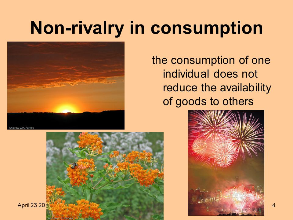 April Non-rivalry in consumption the consumption of one individual does not reduce the availability of goods to others