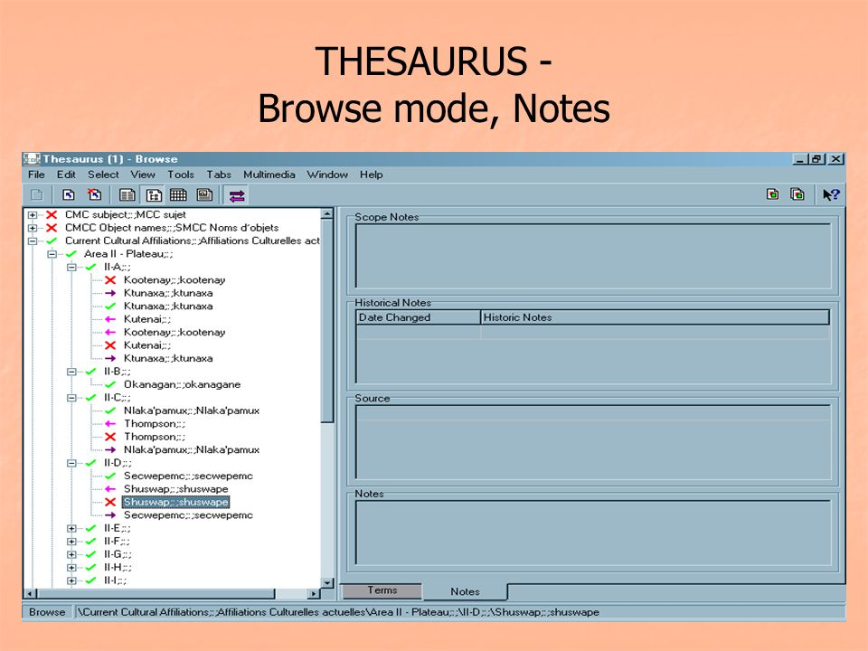THESAURUS - Browse mode, Notes