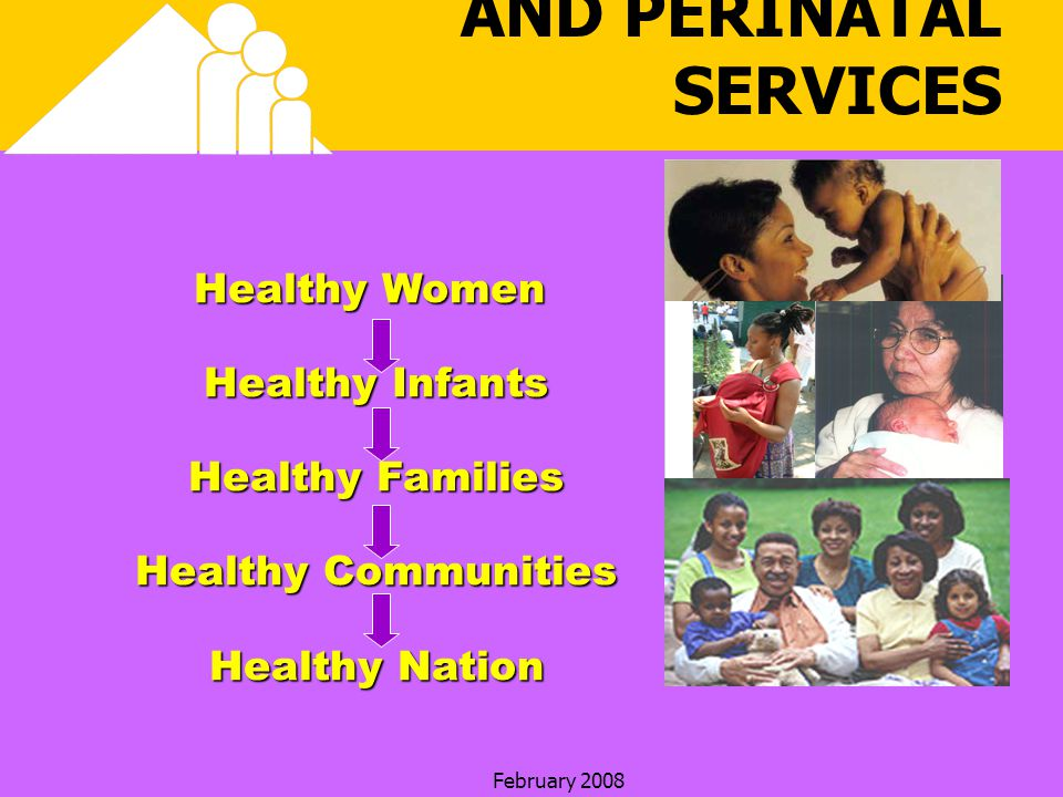 February 2008 HEALTHY START AND PERINATAL SERVICES Healthy Women Healthy Infants Healthy Families Healthy Communities Healthy Nation